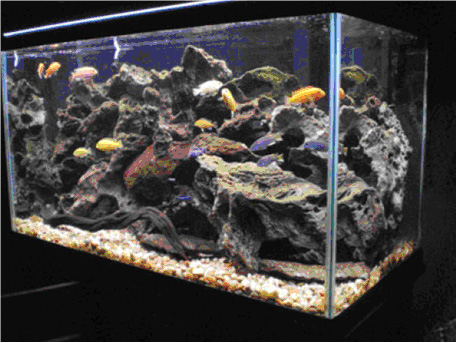 fish tank rocks fish aquarium rocks 2017 fish tank